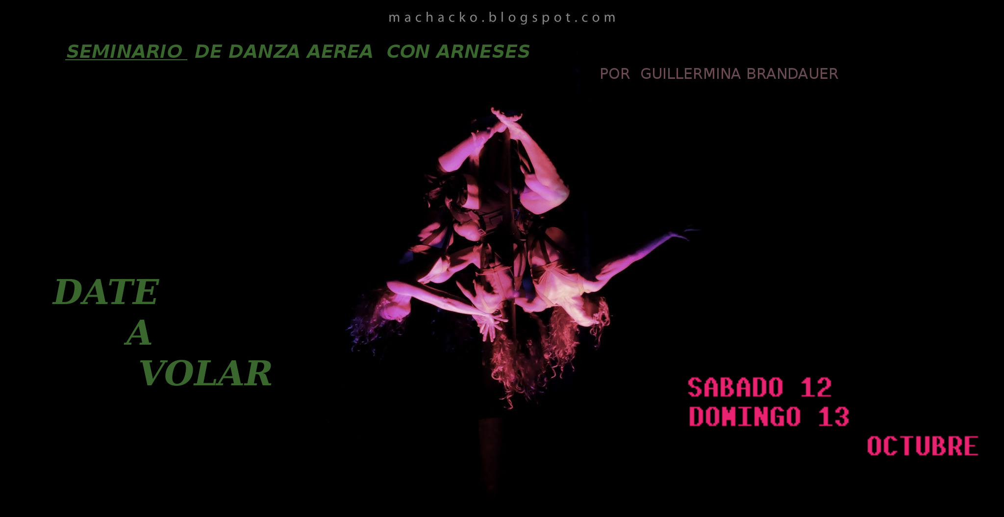 Guillermina DanzaVertical Intensivo Flayer